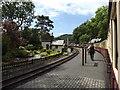 SH6541 : Tan-y-bwlch station by Richard Hoare