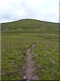 SH8240 : Incipient path forming on Arenig Fach by Richard Law