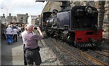 SH4862 : Photo Opportunity at Caernarfon by Jeff Buck