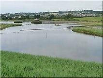 SY2591 : Island Hide, Black Hole Marsh, Axe Estuary wetlands by Christine Johnstone