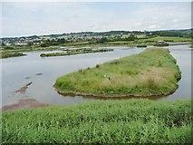 SY2591 : Artificial island, Black Hole Marsh, Axe Estuary wetlands by Christine Johnstone