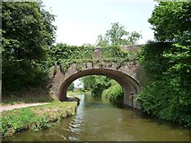 SS9712 : Tidcombe Bridge, Grand Western Canal, from the south-west by Christine Johnstone