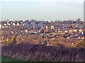 TQ2494 : The view from Badgers Croft, Totteridge by David Howard