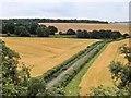 SU6534 : Grosvenor Road by David Dixon