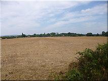 SU8402 : Appledram, stubble field by Mike Faherty