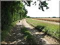 TM0693 : Footpath to Old Buckenham by Evelyn Simak