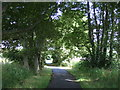 NH6166 : National Cycle Route 1  by JThomas
