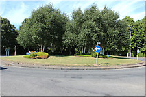 NS3218 : Roundabout at Earls Way, Doonfoot by Billy McCrorie