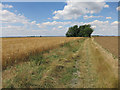 TL2466 : Pathfinder Long Distance Walk by Hugh Venables