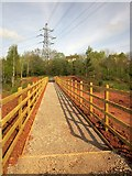 SX9066 : New footbridge, Nightingale Park by Derek Harper