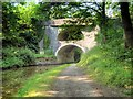 SD9050 : The Double Arched Bridge at East Marton by David Dixon