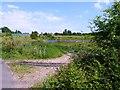 SO9696 : Looking towards pond by Alex McGregor