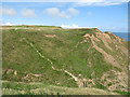 TA2372 : Steps up from the ravine, Little Thornwick Bay by Pauline E