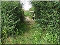 SU8975 : Footbridge between fields by Alan Hunt