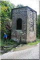SK3056 : Sheep Pasture Incline engine house by Chris Allen