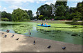 TQ2782 : Boating Lake, Regents Park, London by Christine Matthews