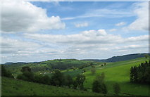 SO3566 : Looking towards Lingen-Herefordshire by Martin Richard Phelan