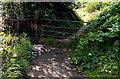 SO5517 : Kissing gate to a riverside track, Symonds Yat West by Jaggery