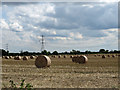 SE6551 : Power lines crossing a harvested field by Pauline E