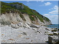 SY7680 : Beach Below White Nothe by Nigel Mykura