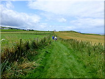 D0444 : Walkers along the coastal path at Ballintoy by Kenneth  Allen