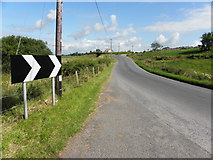 H6260 : Whitebridge Road by Kenneth  Allen