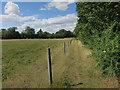 TL2965 : Bridleway to Hilton by Hugh Venables