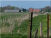 TF1722 : Willow Tree Farm by Mat Fascione
