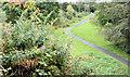 J3469 : Paths, Belvoir forest, Belfast (August 2014) by Albert Bridge