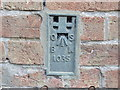 TL1198 : Ordnance Survey Flush Bracket 1035 by Peter Wood