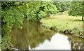 J3369 : The River Lagan, Belvoir forest, Belfast (August 2014) by Albert Bridge