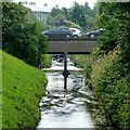 SK5538 : The River Leen by David Lally