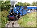 SP4725 : Beeches Light Railway by Chris Allen