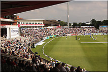 SJ8195 : At the Cricket 13 by Anthony O'Neil