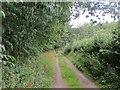 NO1041 : Millhole Road by Richard Webb