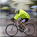 TQ2980 : Cyclist in The Mall by David P Howard
