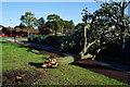 TA1331 : Storm damage on Marfleet Lane, Hull by Ian S