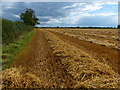 SK6308 : Lines of straw waiting to be baled by Mat Fascione
