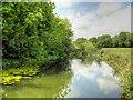 TF0206 : River Welland, Upstream from George Bridge in Stamford by David Dixon