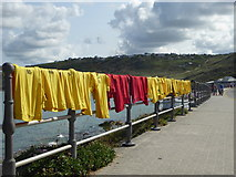 SW3526 : Hanging out to dry by Rod Allday