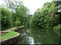 SD7721 : Mill pond, Higher Mill, Helmshore by Christine Johnstone