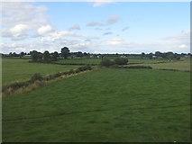 N2928 : Fields near Silver River by Ian Paterson