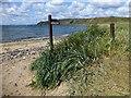 NT4799 : Fife Coastal Path by Rude Health