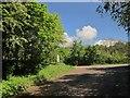 SX9066 : Meeting Barton Hill Way by Derek Harper