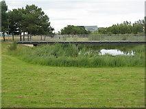 NT2276 : Footbridge in Forthquarter Park by M J Richardson