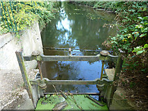 TQ1272 : Old sluice, Hounslow Powder Mills site by Robin Webster