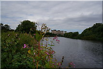 SE4824 : The River Aire towards Ferrybridge by Ian S