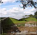 TM4587 : New solar farm in Ellough by Evelyn Simak