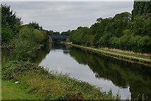 SE5023 : Knottingley & Goole Navigation at Racca Green by Ian S