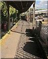 SX8765 : Walkway, Otter Nurseries by Derek Harper